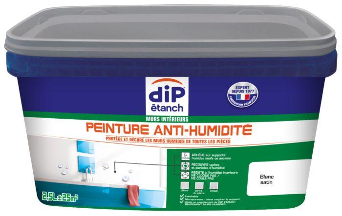Peinture Acrylique Mur Et Plafond Anti Humidité 5l Dip