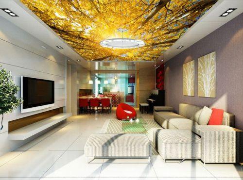 Prix peinture plafond tendu