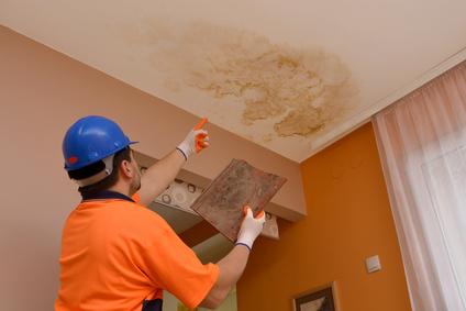 Devis peinture degat des eaux