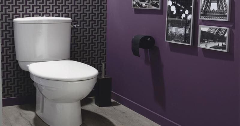 Peinture décoration toilettes