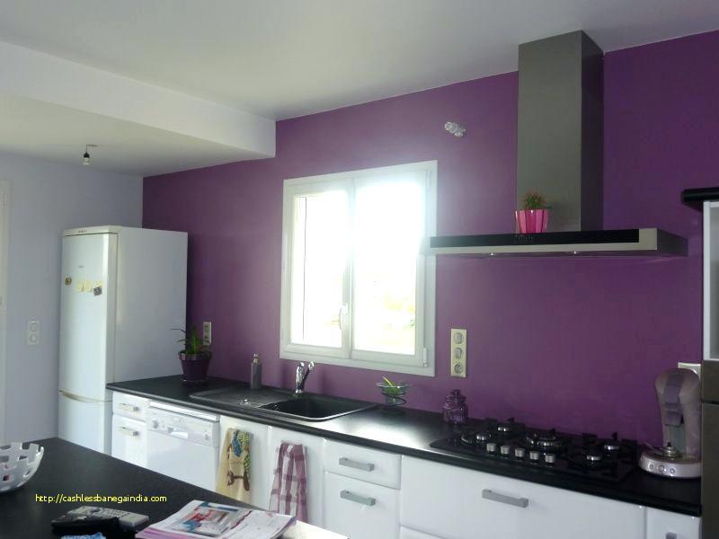 Peinture aubergine pour meuble de cuisine